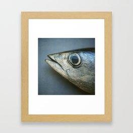 kudapola 117, torpedo from the ocean depths* Framed Art Print