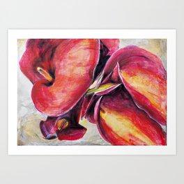 Calla Lillies #2 Art Print