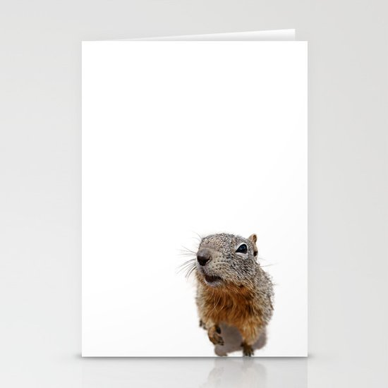 Curiosity Stationery Cards