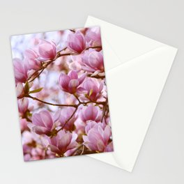 PRETTY PINK MAGNOLIAS IN THE LATE SPRING AFTERNOON SUNSHINE Stationery Cards