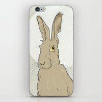 hare iPhone & iPod Skins featuring Hare by Stu Jones
