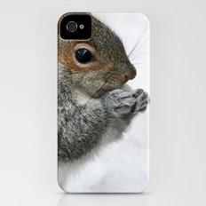 Snow Squirrel Slim Case iPhone (4, 4s)