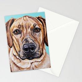 Kovu the Dog's pet portrait Stationery Cards