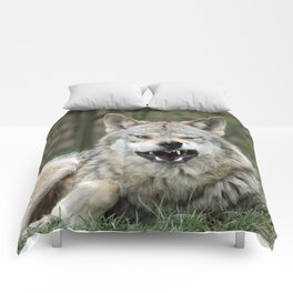 Wolf_012_by_JAMFoto Comforters