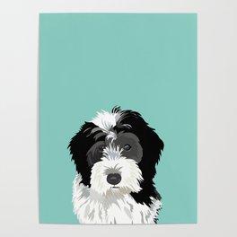 Bernedoodle pet portrait art print and dog gifts Poster