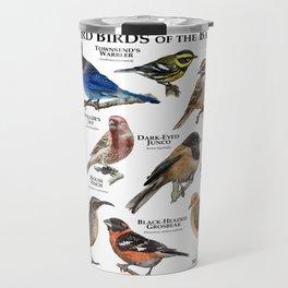 Backyard Bird of the Bay Area Travel Mug