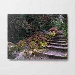 Old Stairs Metal Print