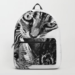 Sharpen their claws Backpack
