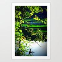 glimps of wonder  Art Print