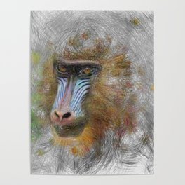 Artistic Animal Mandrill Poster