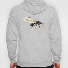Black Winged garden ant species lasius niger Hoody