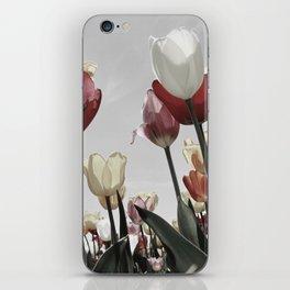 Field of Tulips iPhone Skin