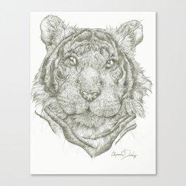Wildcat Kurt  Canvas Print