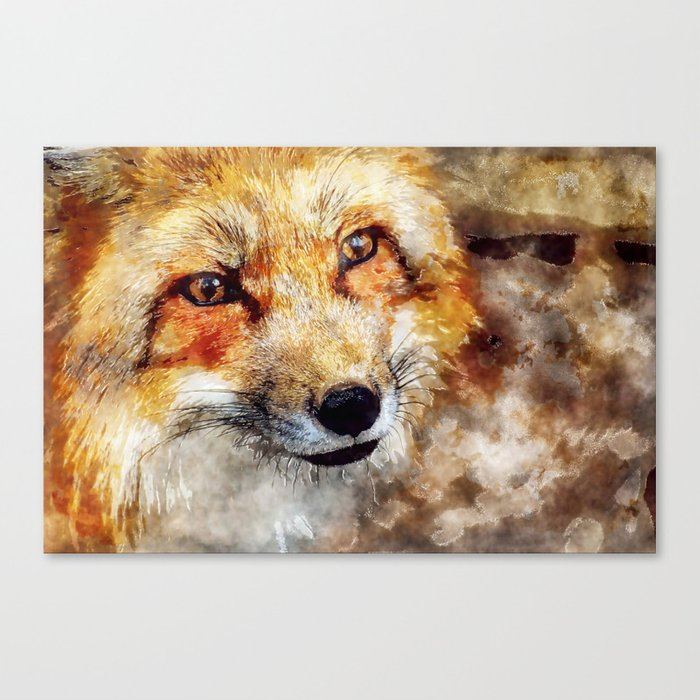 Fox animal nature wild forest-  watercolor illustration Canvas Print