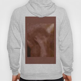 Too Abstruse Hoody