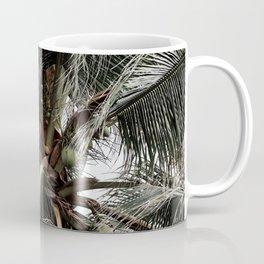 Green Coconuts Coffee Mug