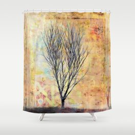 Creating the Universe Shower Curtain