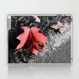 Something Fleeting Laptop & iPad Skin