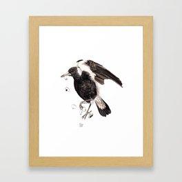 Magpie 2016 Framed Art Print