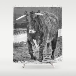 English Longhorn Black And White Shower Curtain