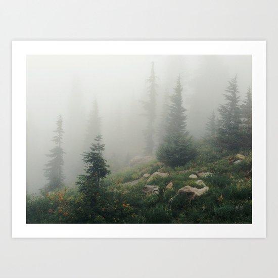 Mt Hood National Forest Art Print