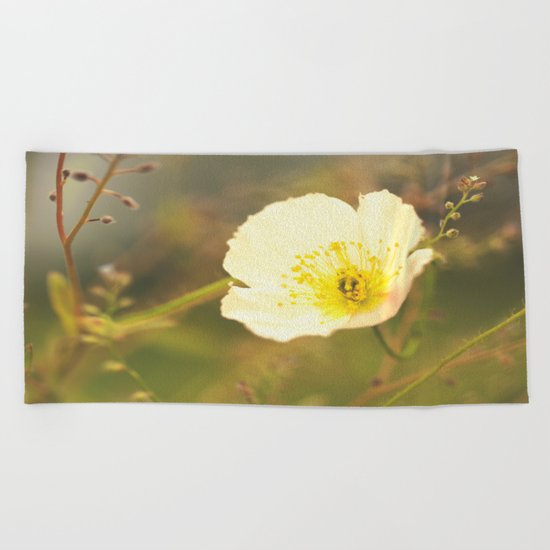 Poppy in August  Beach Towel