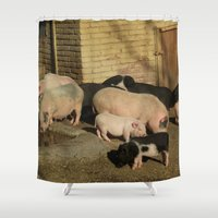 pigs Shower Curtains featuring Pigs' Party by Vito Fabrizio Brugnola
