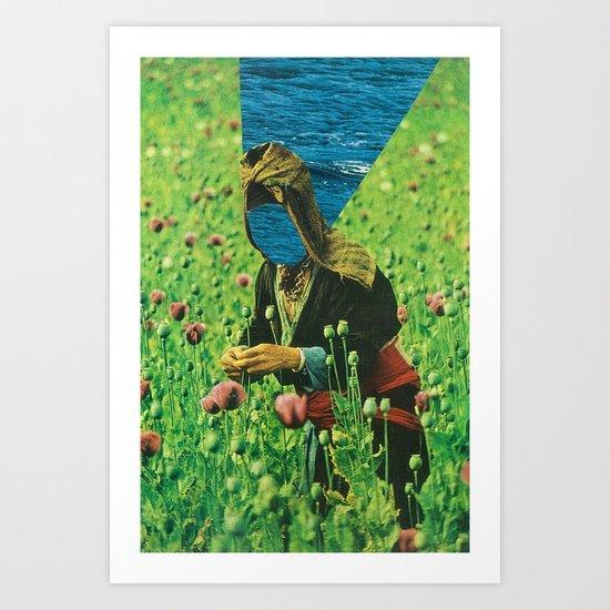 field of tall poppies Art Print