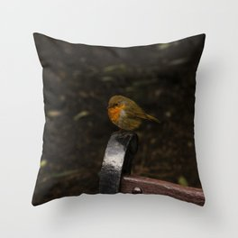 Resting Robin Throw Pillow