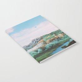 SVNVVTN Notebook