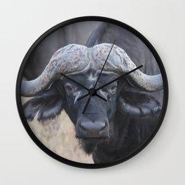 On Safari - Buffalo Wall Clock