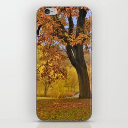Fall at Larz Anderson iPhone Skin