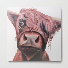 Highland Cow Art Print. Scottish Native Cow Wall Art. Metal Print