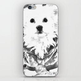 Cute dog iPhone Skin