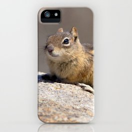 Watercolor Golden-Mantled Ground Squirrel 06, Dunraven Trail, Colorado iPhone Case