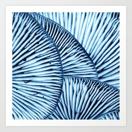 Enoki in Blue Art Print