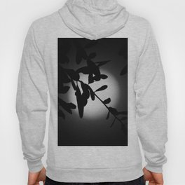 The Elegant Side of the Moon Hoody