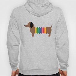 Rainbow Dooooog Hoody