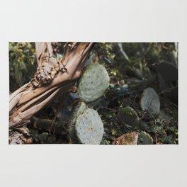Prickly Pear Mood Rug