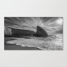 Rock and Water Canvas Print
