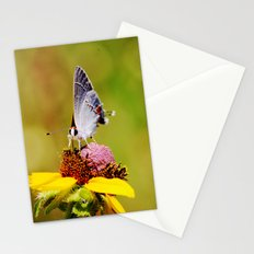 Brown Eyed Susan & Hairstreak Butterfly Stationery Cards