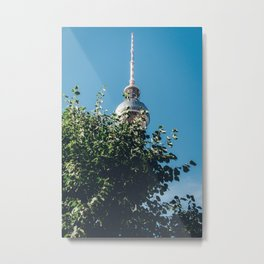 Hidden Gem Metal Print