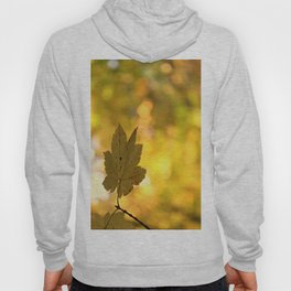 Twinkling Leaf Lights Hoody