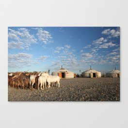 LIVING WITH GOATS Canvas Print