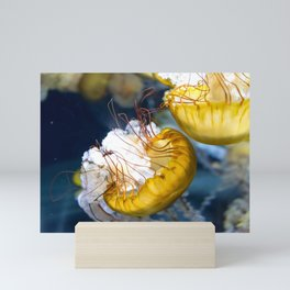 Jellyfish Artwork Photo Mini Art Print