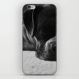 Sleeping Dogs Lie iPhone Skin