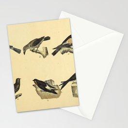 062 tanagra atra Palmchat Eurasian Nightjar Lesser Nighthawk hirundo rusticola hirundo urbicola10 Stationery Cards