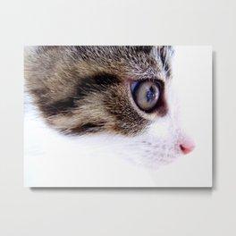 My Kitten in High Key Metal Print