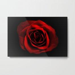 Shadowed Rose Metal Print