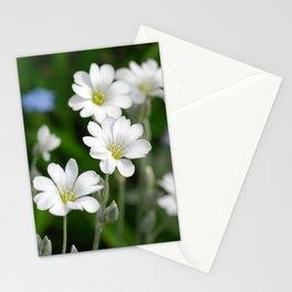 Flowers Izby Garden 7 Stationery Cards